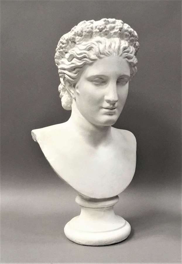 C19th plaster life size bust of Venus